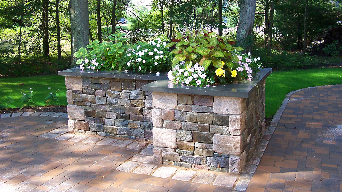 Shade Annuals in Wall Planter