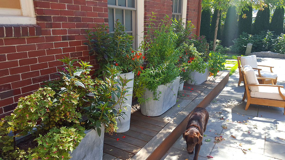 Part Shade Annual and Herb Planters
