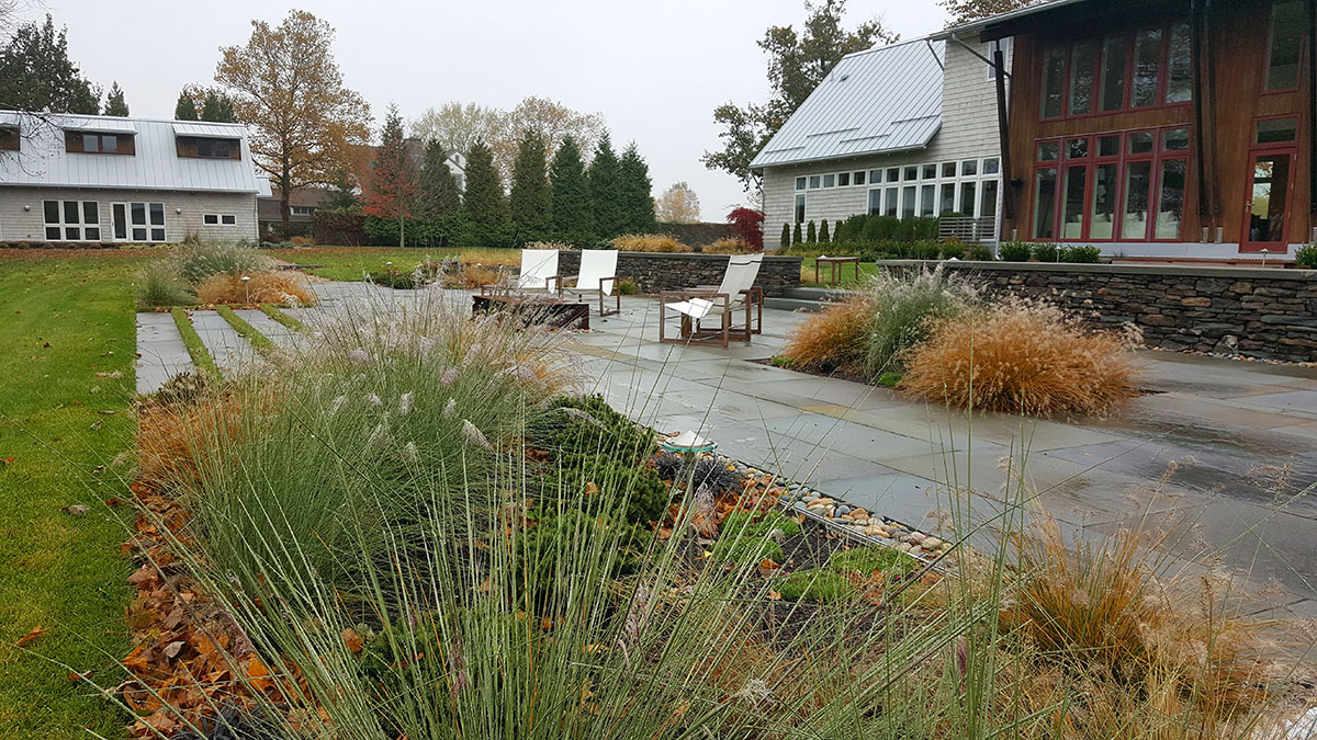Ornamental Grasses Soften the Lines of the Hardscape